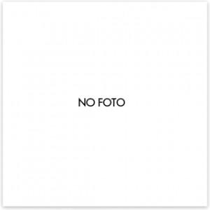 Filtro Lavastoviglie Smeg Fltag101